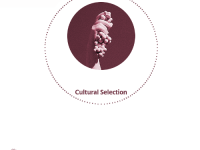 The Invisible Tour- Cultural Selection